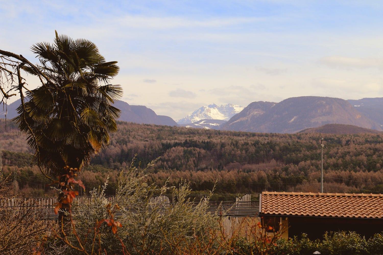 Sicht auf den Monte Baldo