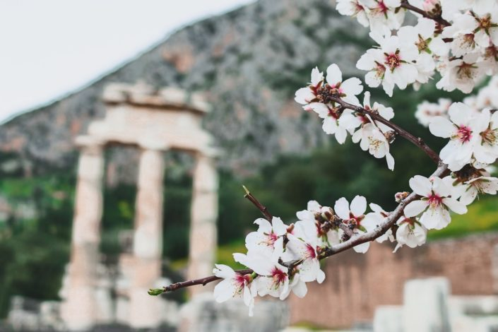 Heiligtum der Athena Pronaia