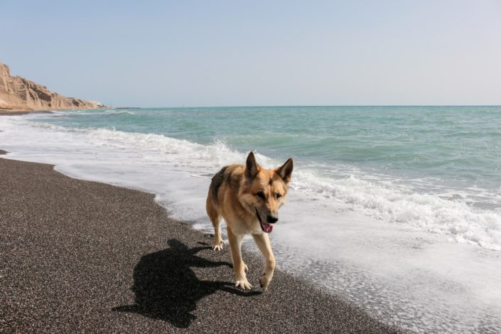 Der ganze Strand für uns