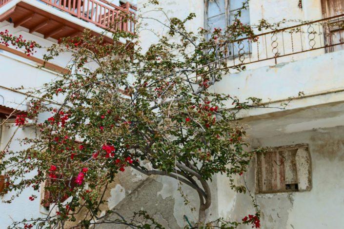 Unterwegs in Naxos Stadt