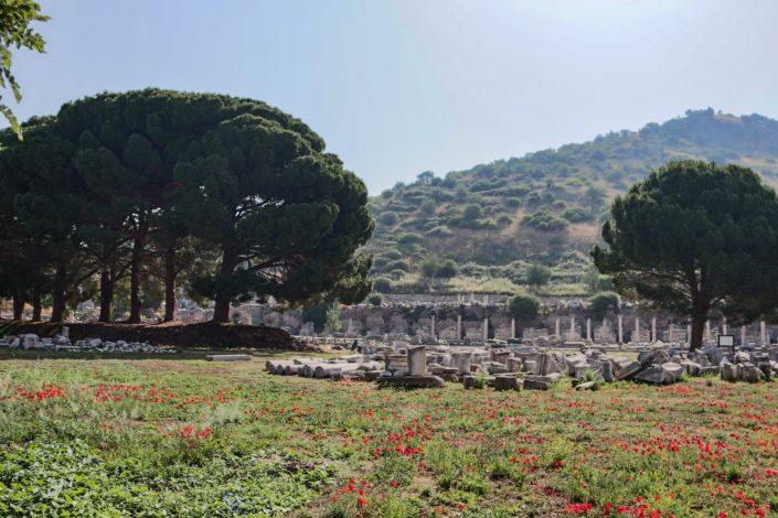Stadt Ephesus