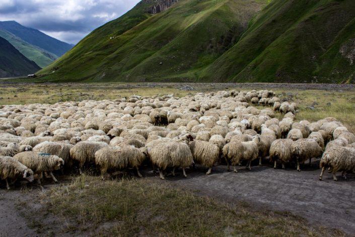 Auf dem Weg ins Truso Valley