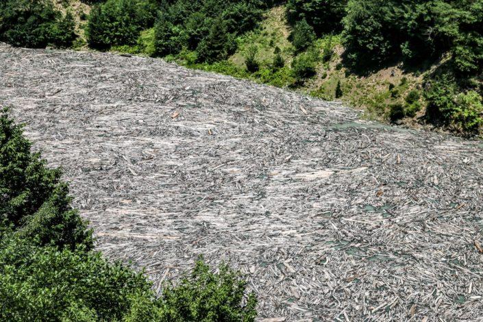 Abertausende von Holzstämmen auf dem Enguri Dam