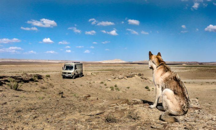 Kasachsisches Nichts