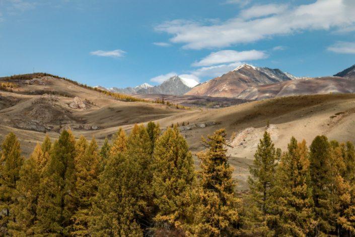 Natur in der Republik Altai