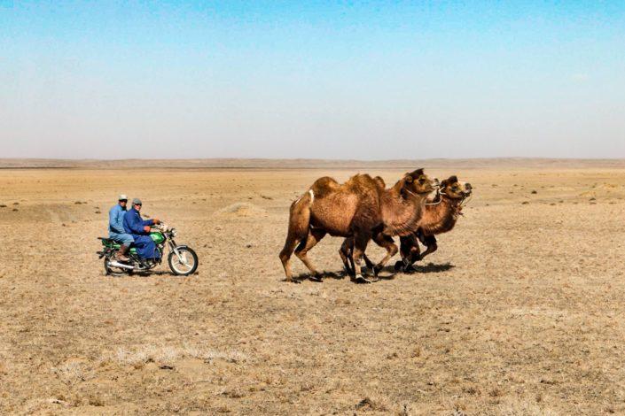 Typisches Bild in der Mongolei