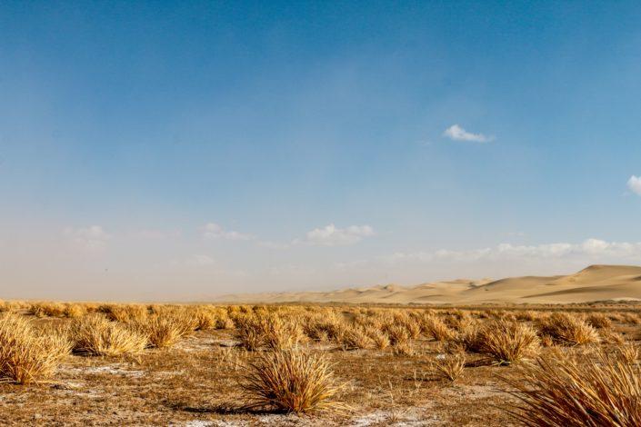 Auf dem Weg zur Khongoryn Els Düne
