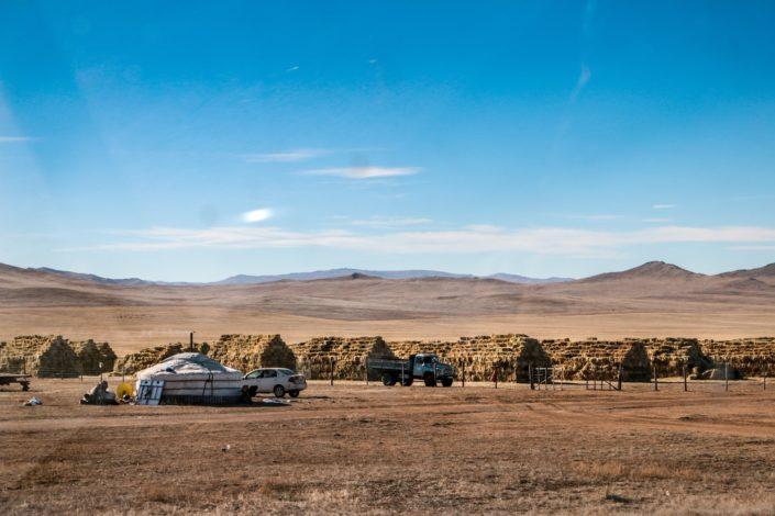 Vorkehrungen für den Winter | Auf dem Weg zum Hustai Nationalpark
