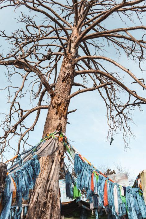 Eej Mod | Der Mutterbaum | Wenige Kilometer vor der Grenze | Ein Ort an dem Buddhismus und Schamanismus zusammentreffen