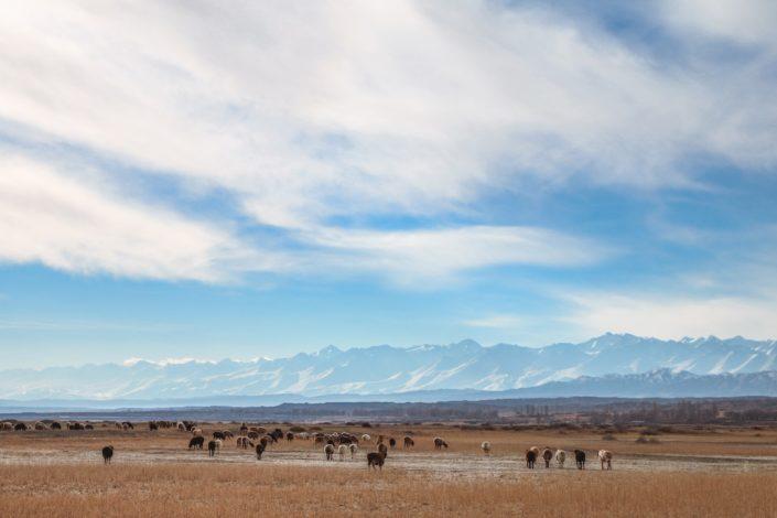 wunderschöne Natur in Kirgistan